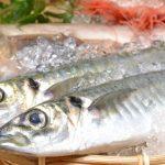 魚を食べるとうつ病の予防、改善につながる! 一日の最適な摂取量とは?